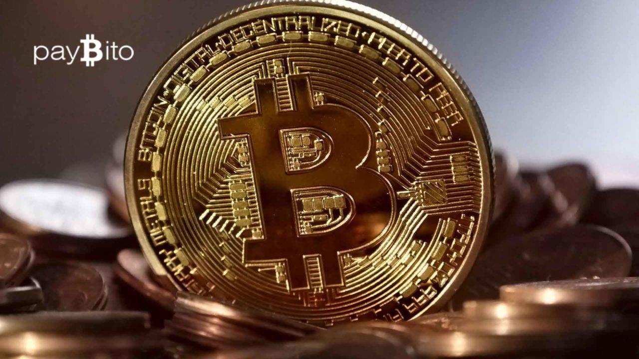https://fintecbuzz.com/wp-content/uploads/2019/11/paybito_crypto-1-1280x720.jpg