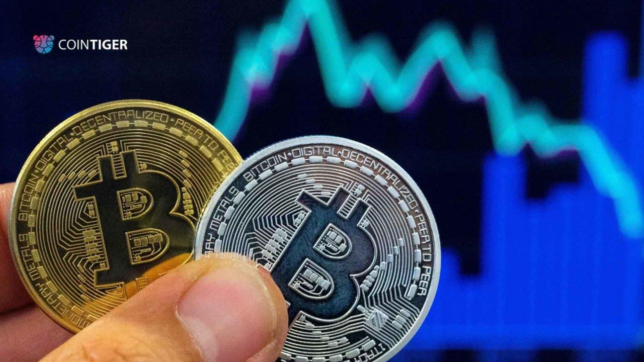 https://fintecbuzz.com/wp-content/uploads/2019/12/coin_crypto-1280x720.jpg